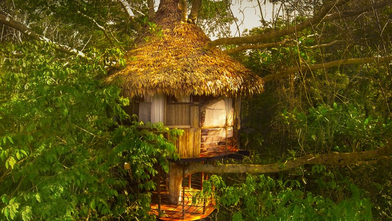 Treehouse-Peru-2